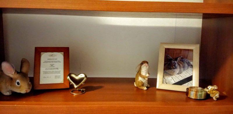 Kremace morčátka Bobinky